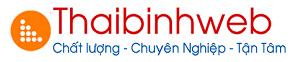 Thái Bình Web – Thiết kế web chuyên nghiệp uy tín